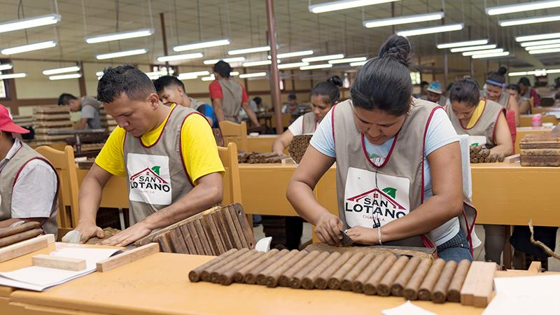 San Lotano Factory Up And Running