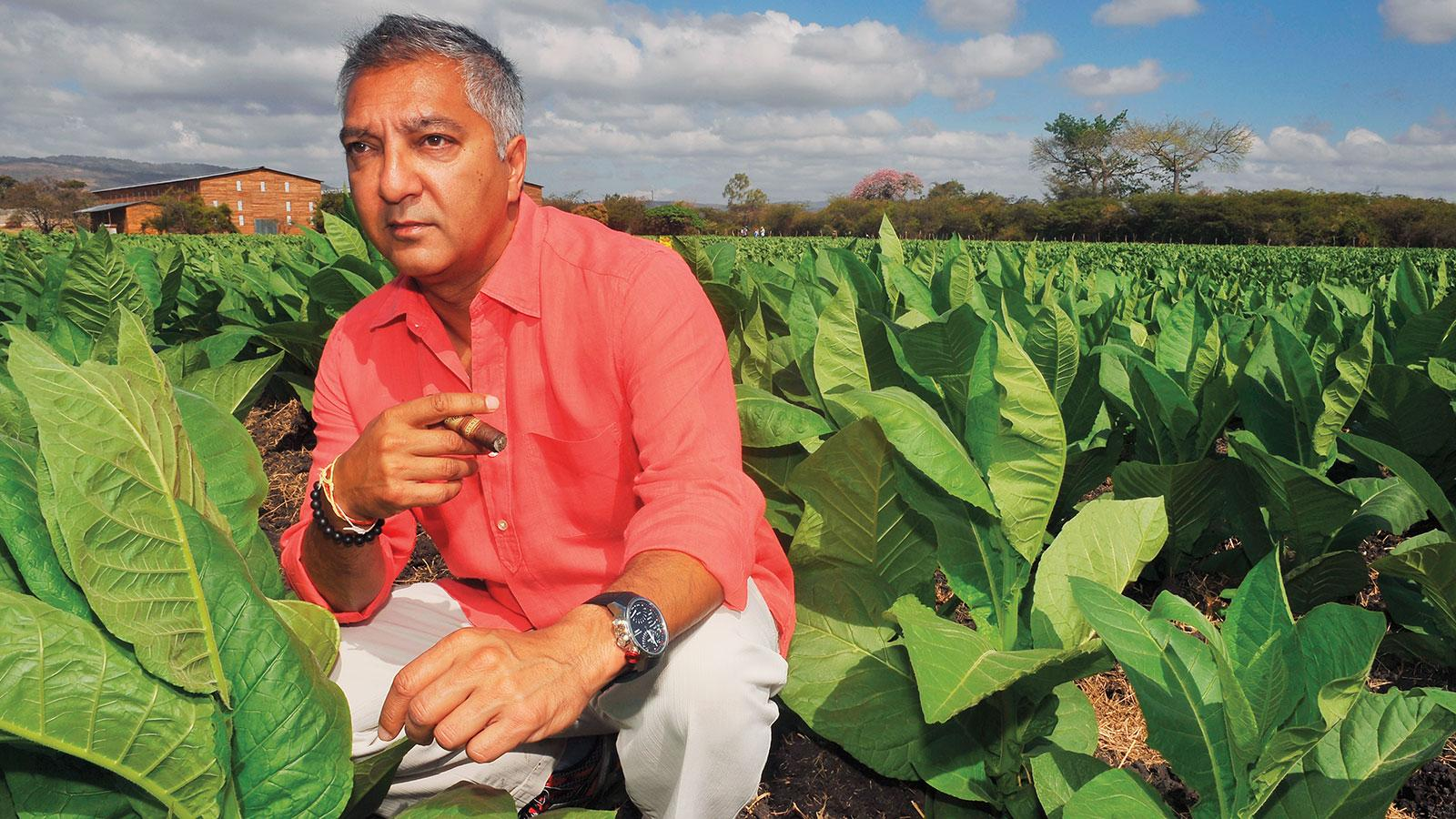 Rocky Patel in a verdant field of tobacco growing in Estelí, Nicaragua, not far from his newest cigar factory. Patel's premium cigar operation is growing ever more integrated.