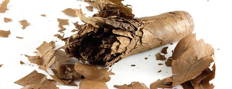 CIGAR 101: 10 Things You Should Never Do As A Cigar Smoker