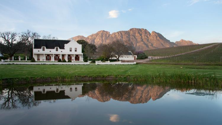 Tasting Highlights: 20 South Africa Values