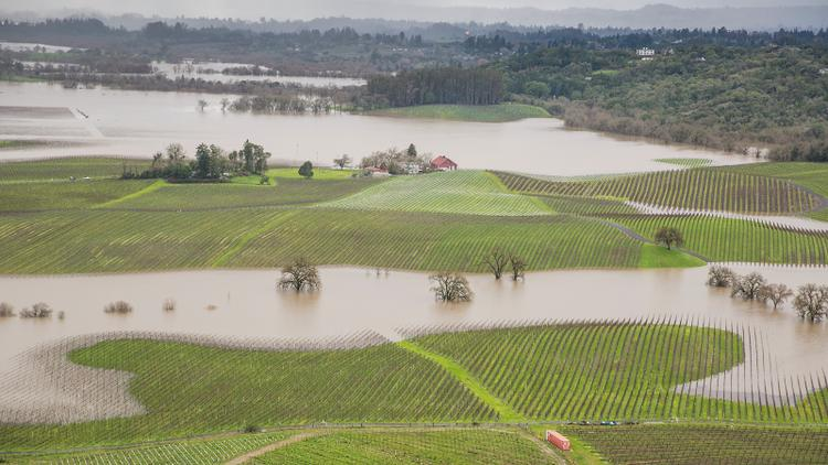 Northern California Emerges from Drought