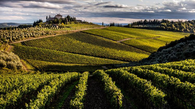 Exclusive: Frescobaldi Expands in Chianti Classico