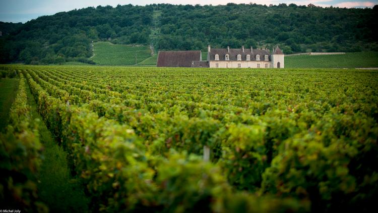Insider: 99-Point Ethereal Pinot Noir