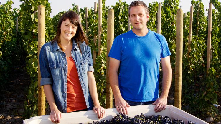 Insider: 96-Point Endless Syrah