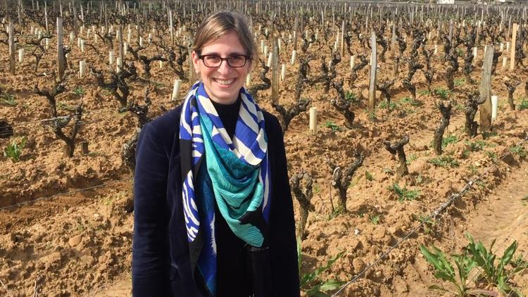 Video: How Do Cover Crops Work in the Vineyard?