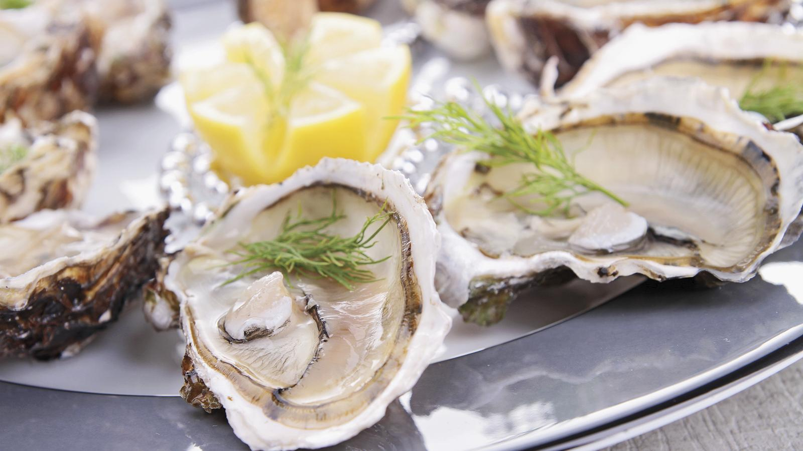 The Magic of Oysters