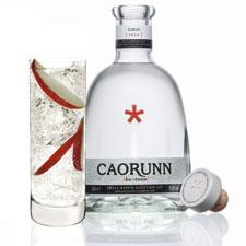 Caorunn Scottish gin with cocktail