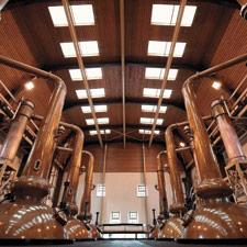 Glenmorangie uses these giant stills, the tallest in Scotland, with a view toward capturing only the light spirits that can climb out of their swan necks.