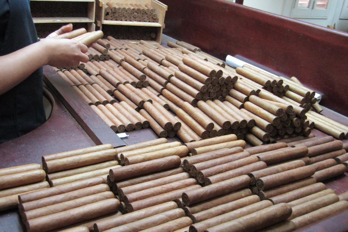 Quality control is where they check cigars for color consistency before each stick is banded up and boxed.