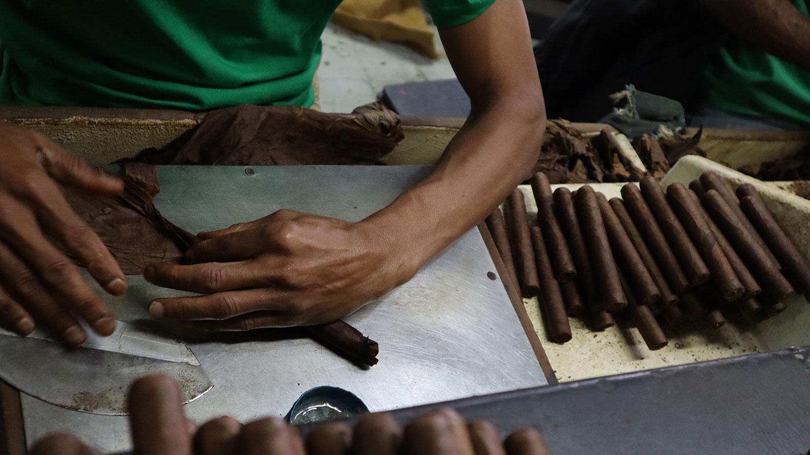 A roller inside the Tabacalera Palma cigar factory in the Dominican Republic.
