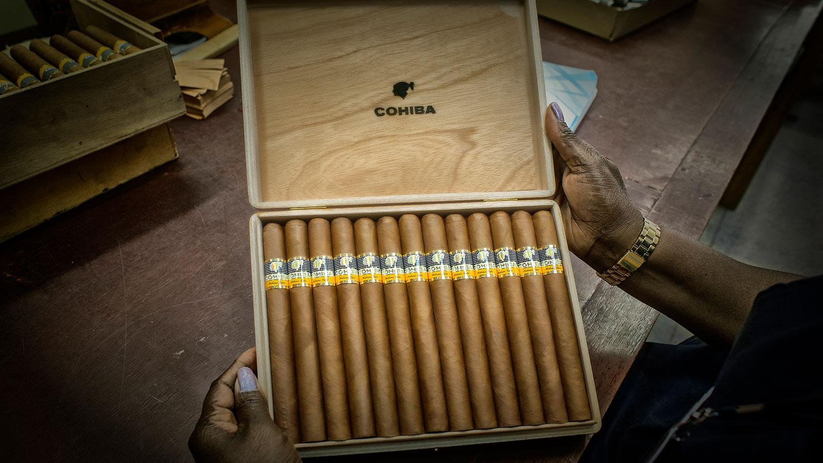 Box of Cohiba Esplendidos
