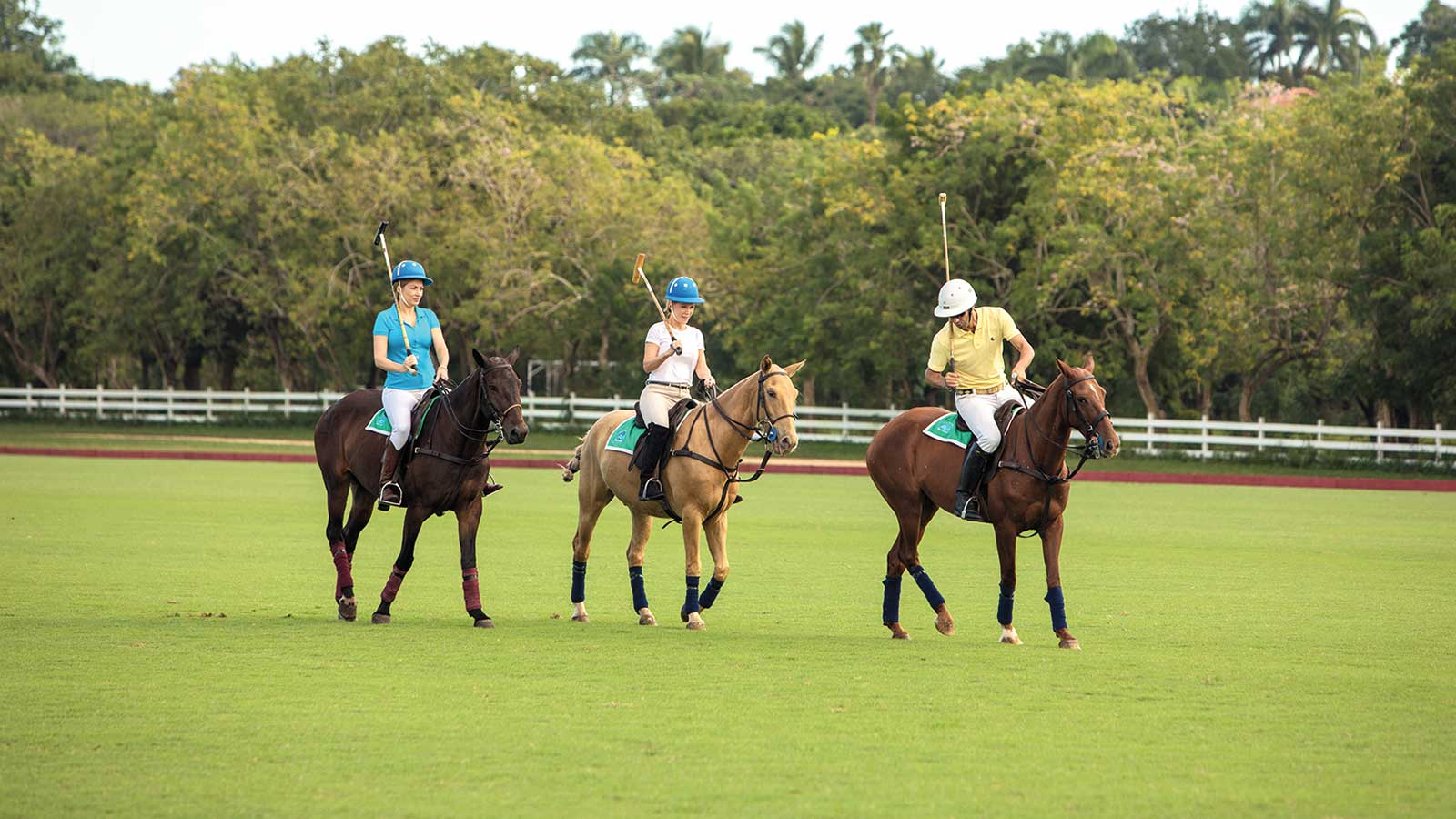 The equestrian center allows for everything from a simple, pleasant ride with the family to expert polo lessons.