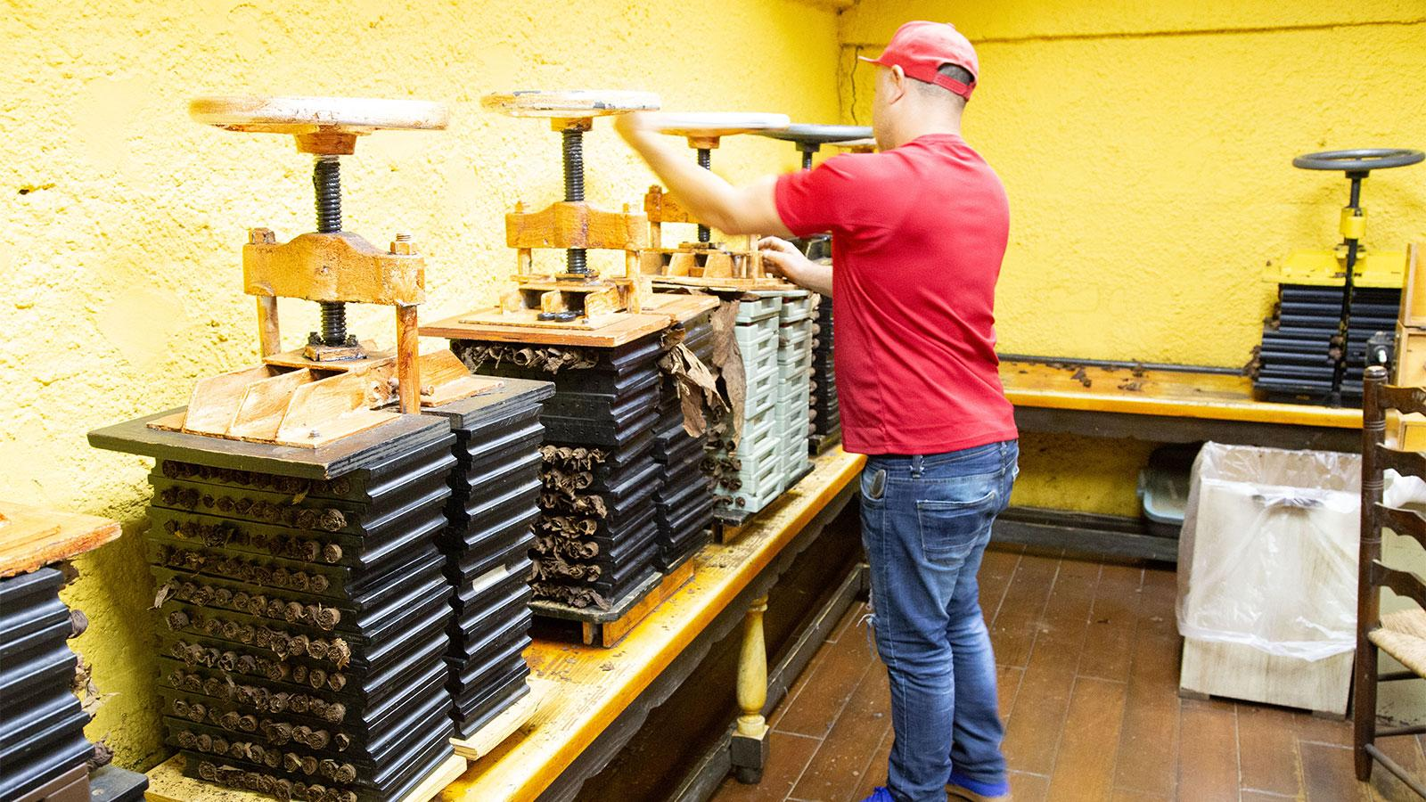 A factory worker loosening a vice before rotating the cigars inside the molds that are being compressed.