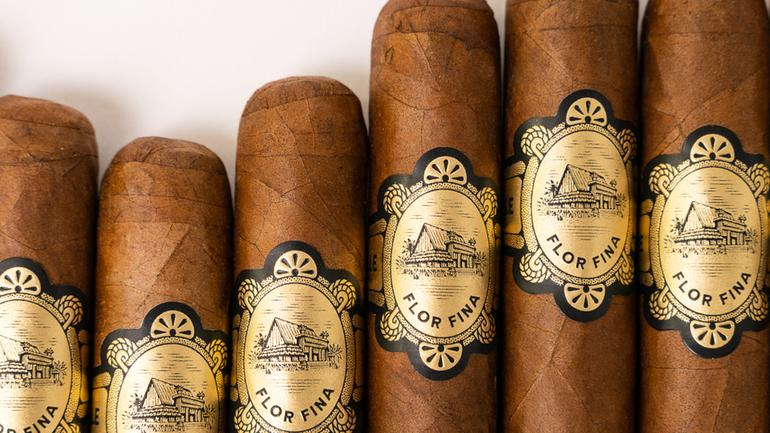 Dominican Warped Chinchalle Now Shipping