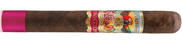 San Cristobal Ovation
