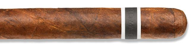 CroMagnon Anthropology