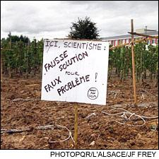 Activists destroyed a vineyard. The sign reads,