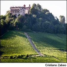 Ca'Viola's Barolo is sourced from a south-facing slope in the Sottocastello cru, located in the commune of Novello.