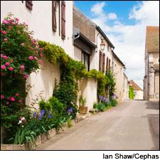 The village of Puligny-Montrachet is home to some of the world's greatest Chardonnay vineyards.