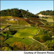 From the Giovanni Rocca winery's Piedmont vineyards comes an outstanding 2012 Nebbiolo.