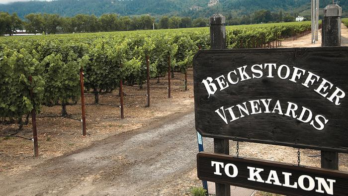 Replanting To Kalon: A Napa Cabernet Renewal