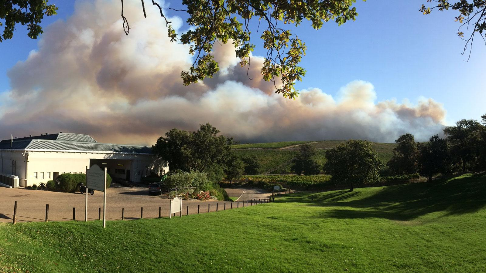 Wildfires Threaten Prime South African Vineyards