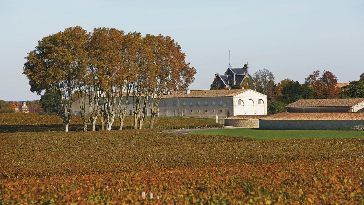 Mouton-Rothschild Launches the 2014 Bordeaux Futures Campaign
