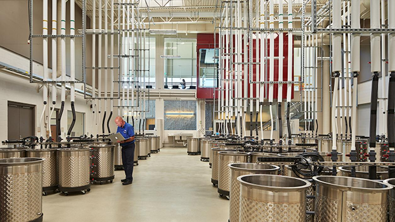 Behind the Scenes: Washington's New $23 Million Classroom for Future Winemakers