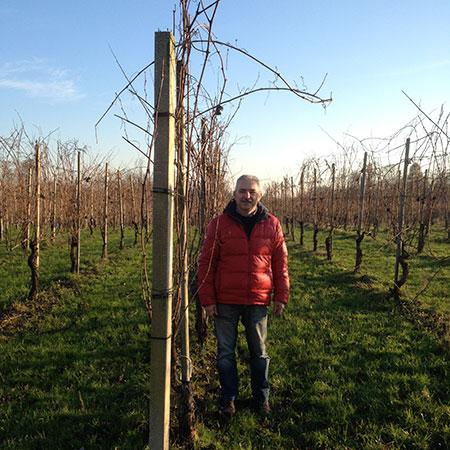 Tiziano Mazzoni stands among his prized vines in northern Piedmont, which are hitting their stride at 15-plus years.