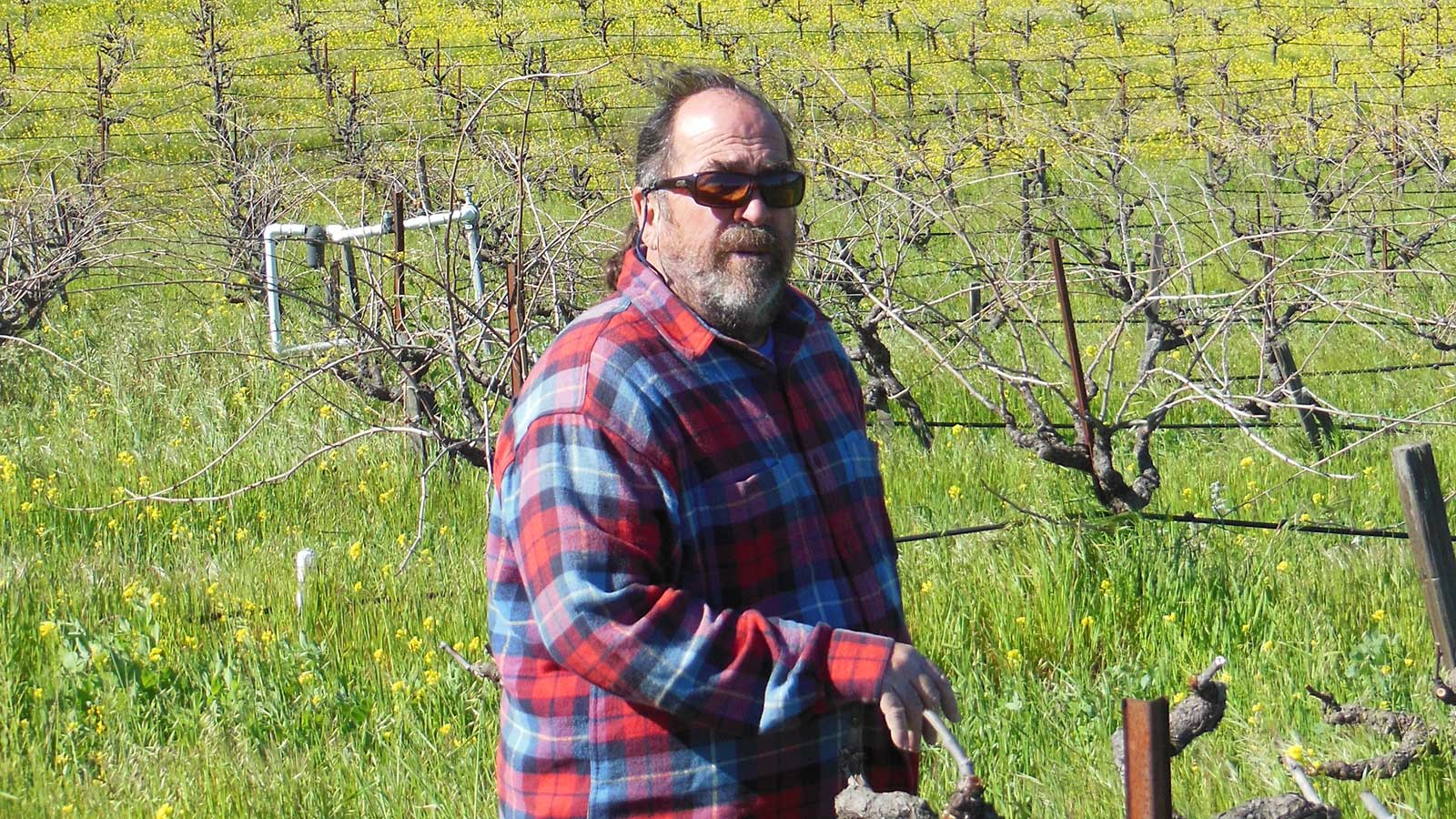 Phil Coturri followed his heart from San Francisco to Napa, where he has become one of wine country's most sought-after sustainable grapegrowing consultants.