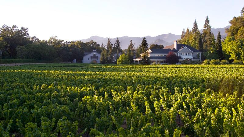 Napa's Duckhorn is expanding its portfolio of Pinot Noirs with a big name.