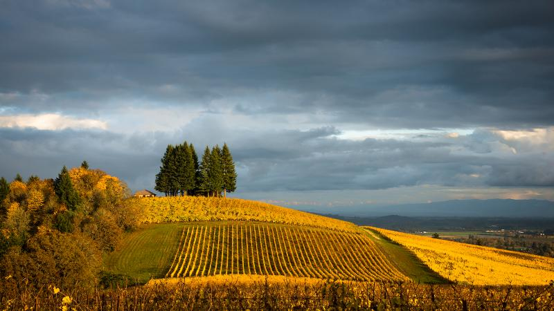 Oregon's autumn has been warm and steady, with little sign of troubling rains.
