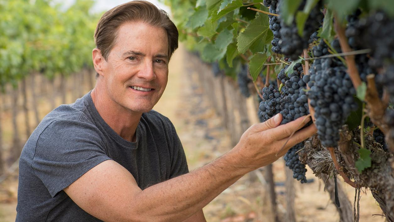 Blushing Actor-Vintner Kyle MacLachlan