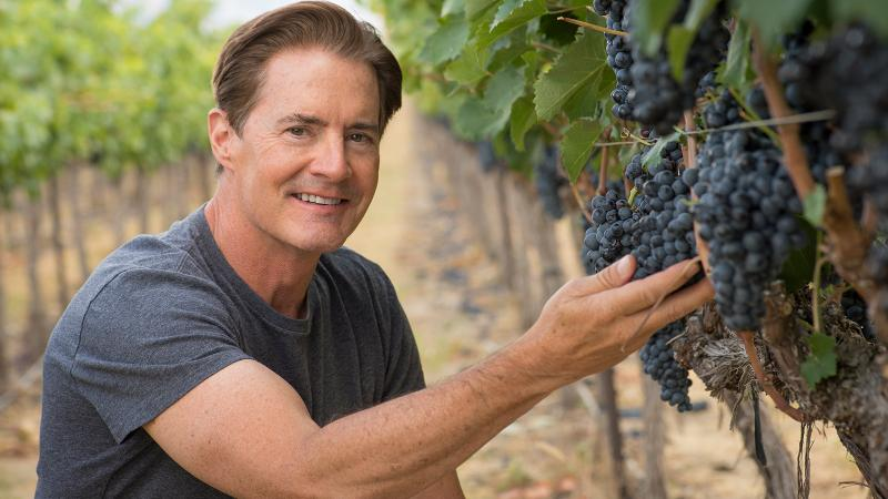 Kyle MacLachlan is turning a few of his prized Washington red grapes into a new rosé.