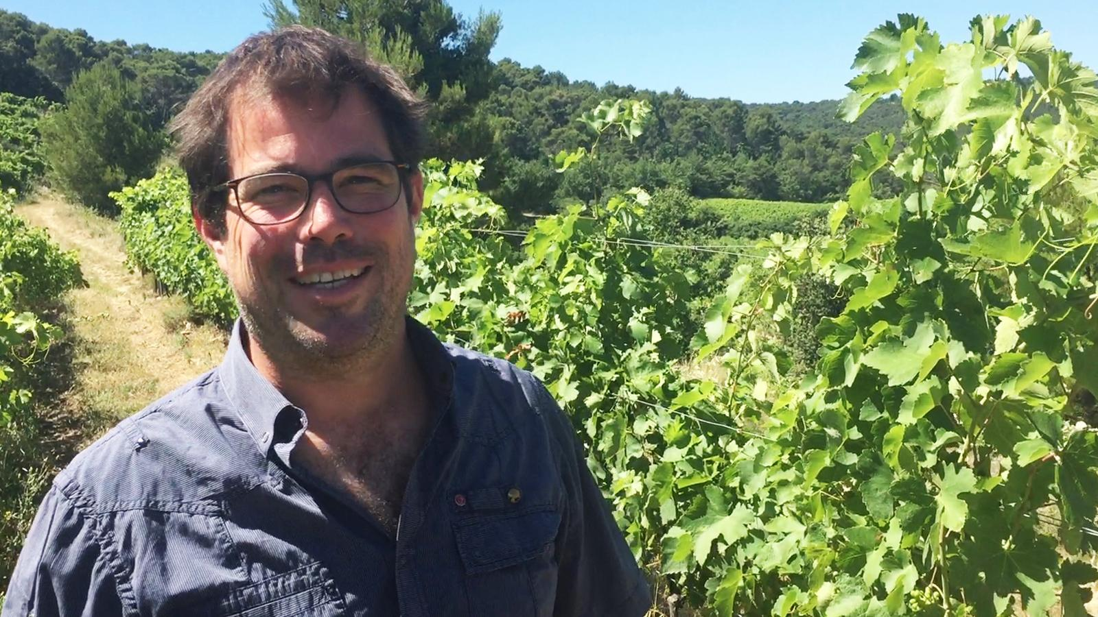 Nicolas Haeni is working hard to improve the vineyard soils at Malmont.