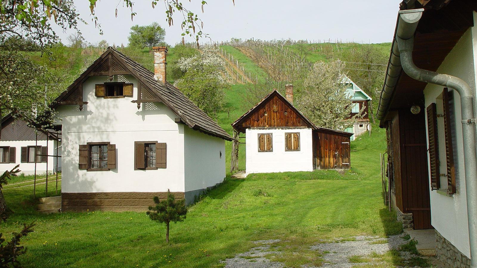 The bucolic Eisenberg is home to some of Austria's best red wines.