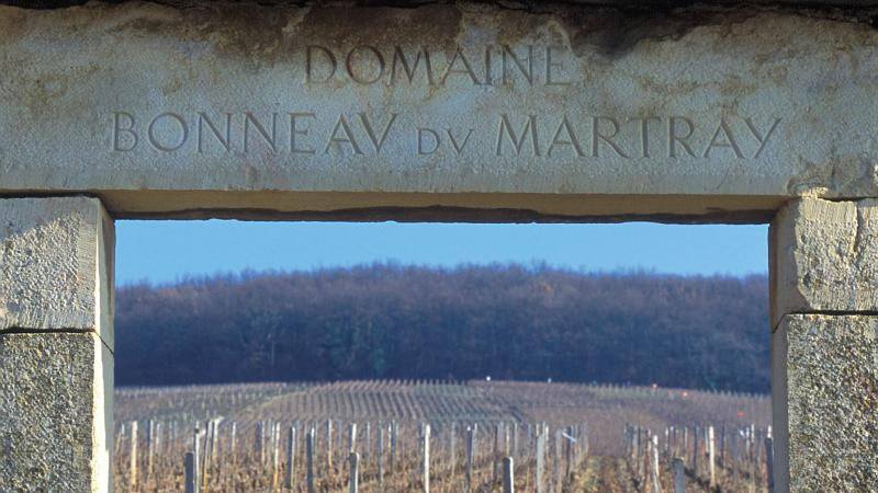 Domaine Bonneau du Martray's vineyard on the hill of Corton in Burgundy.