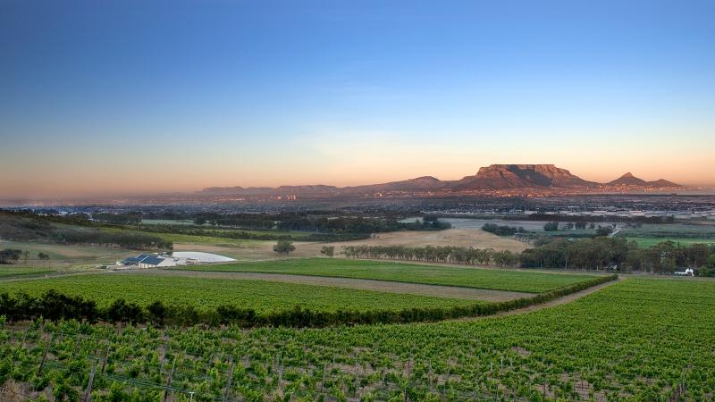 South Africa Gains New Appellation with a Familiar Name: Cape Town