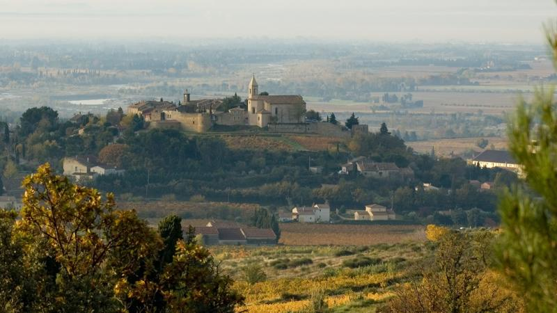 French authorities have doubts on some wines that were labeled with Southern Rhône appellations.
