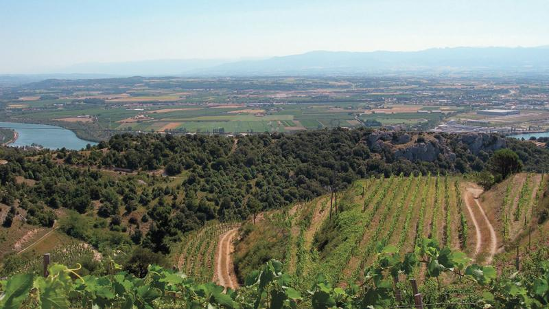 Jean-Luc Colombo showcases prime terroir up and down the Rhône Valley.