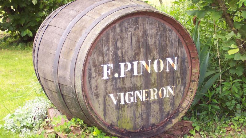 François Pinon works with 15 distinct parcels across his 37-acre property in Vouvray.