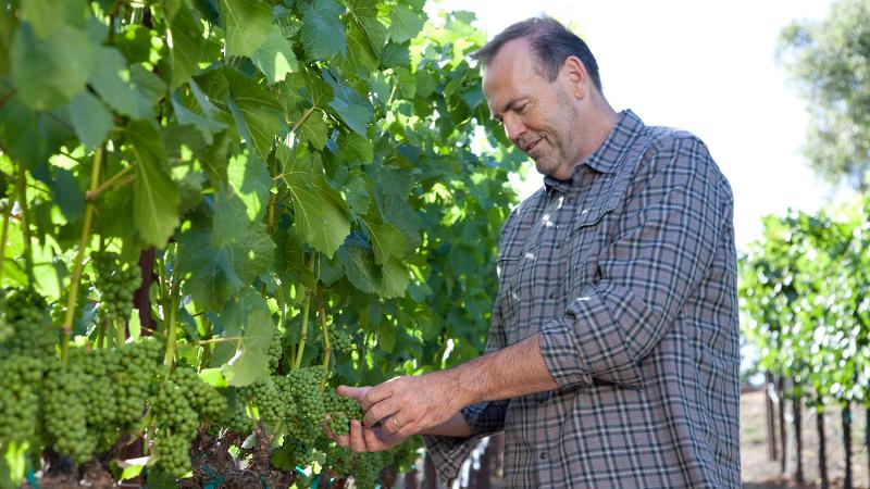 Outside the kitchen, Charlie Palmer produces wines with Iron Horse Vineyards and Mauritson Wines.