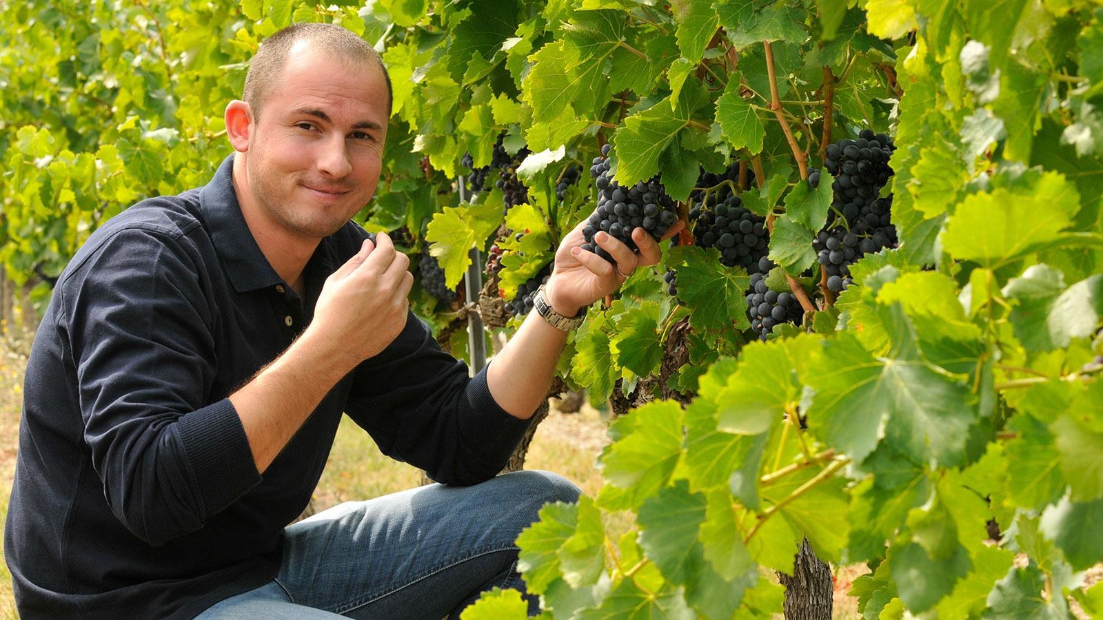 Julien Bréchet might be looking at his best vintage yet with 2016.