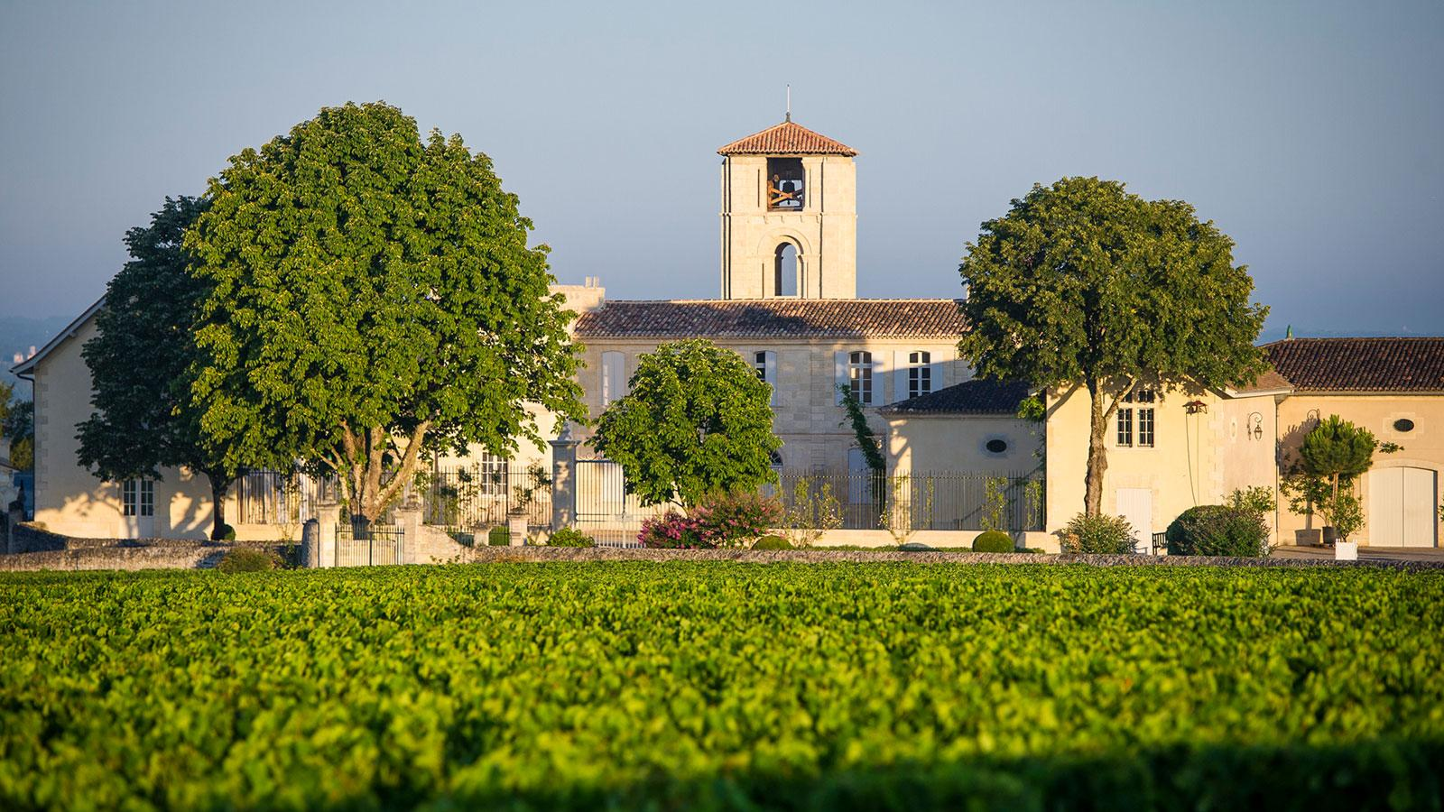 Safe from frost atop the St.-Emilion plateau, 2017 was smooth sailing at Château Canon.