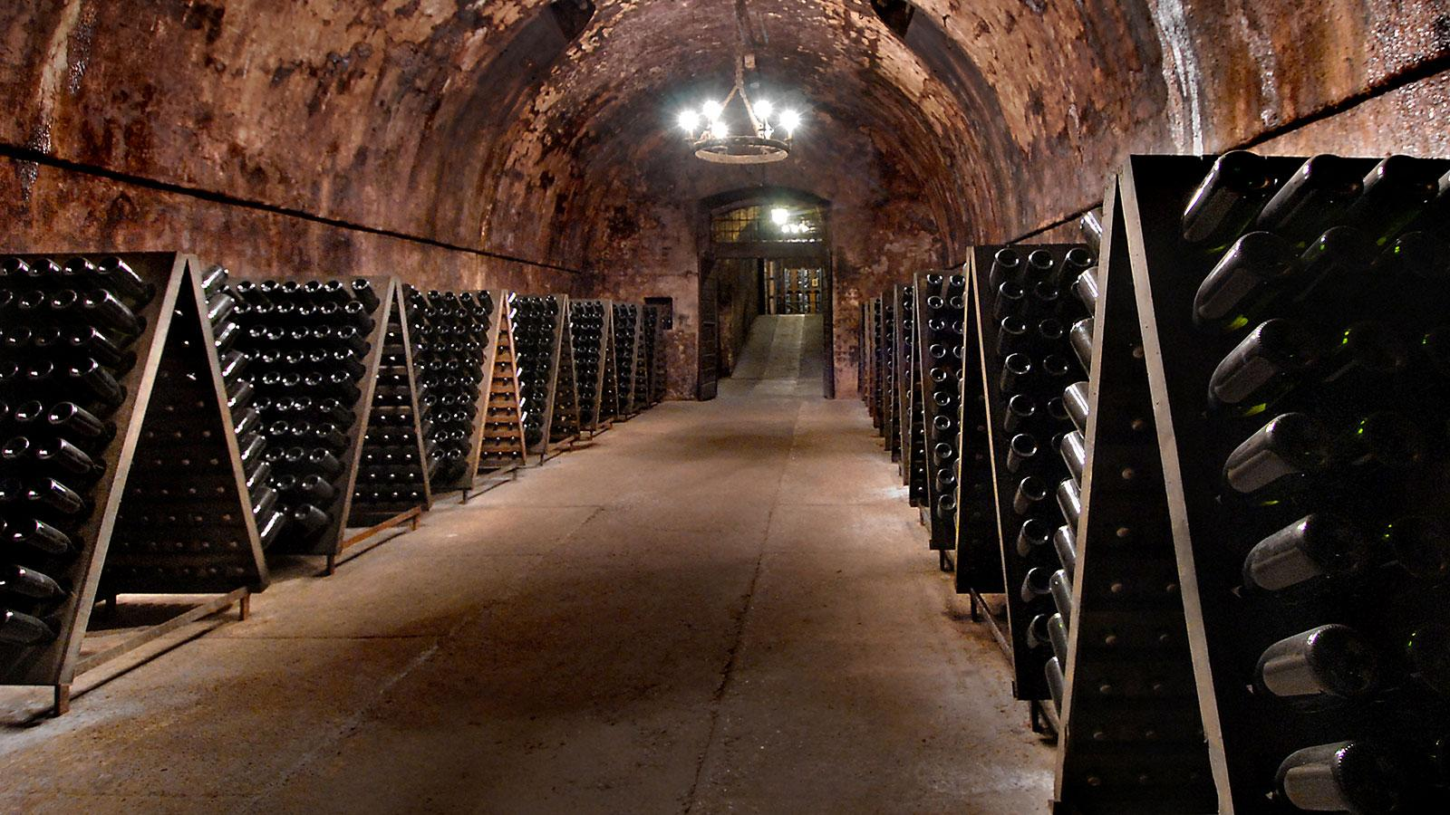 A cellar in Franciacorta, where producers riddle their wines, like in Champagne