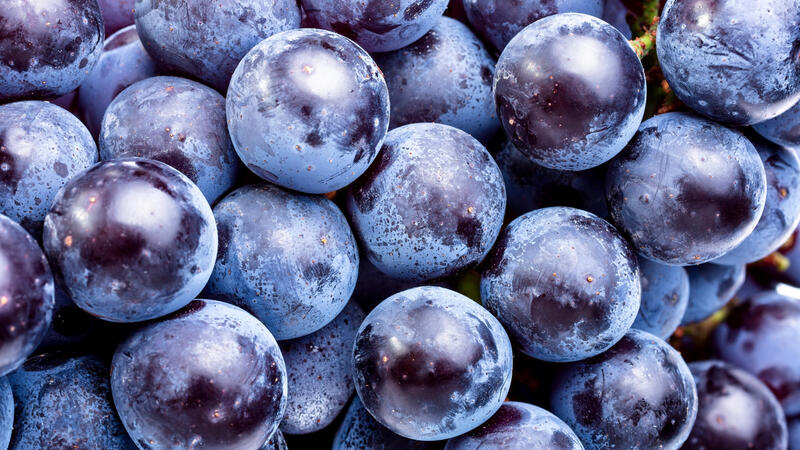 Wine Is Full of Healthy Polyphenols. But What's a Polyphenol?