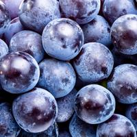Polyphenols are found in the pulp, seeds and skins of grapes.