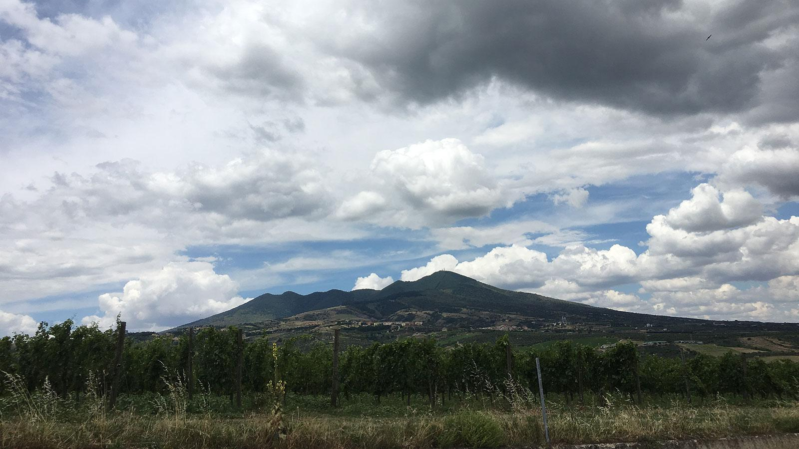The region's layered soils, which contribute to Aglianico's character, include a mix of lava and ash from long-dormant Mt. Vulture.