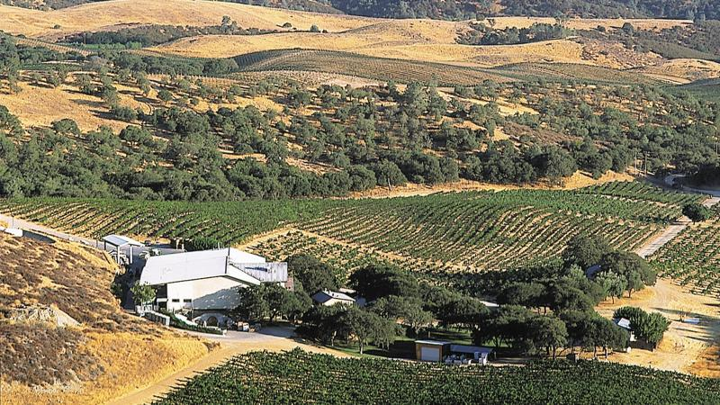 Chalone, which makes wine from many cool-climate grapes like Pinot Noir, has its own namesake AVA in Monterey County.