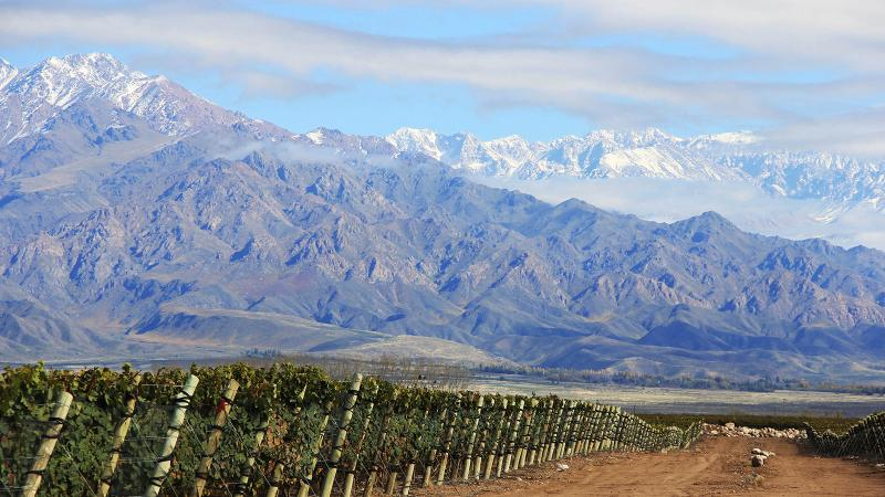Familia Zuccardi, led by Sebastián Zuccardi, is a leader in <i>terroir</i>-driven, high-altitude Malbec in Argentina.